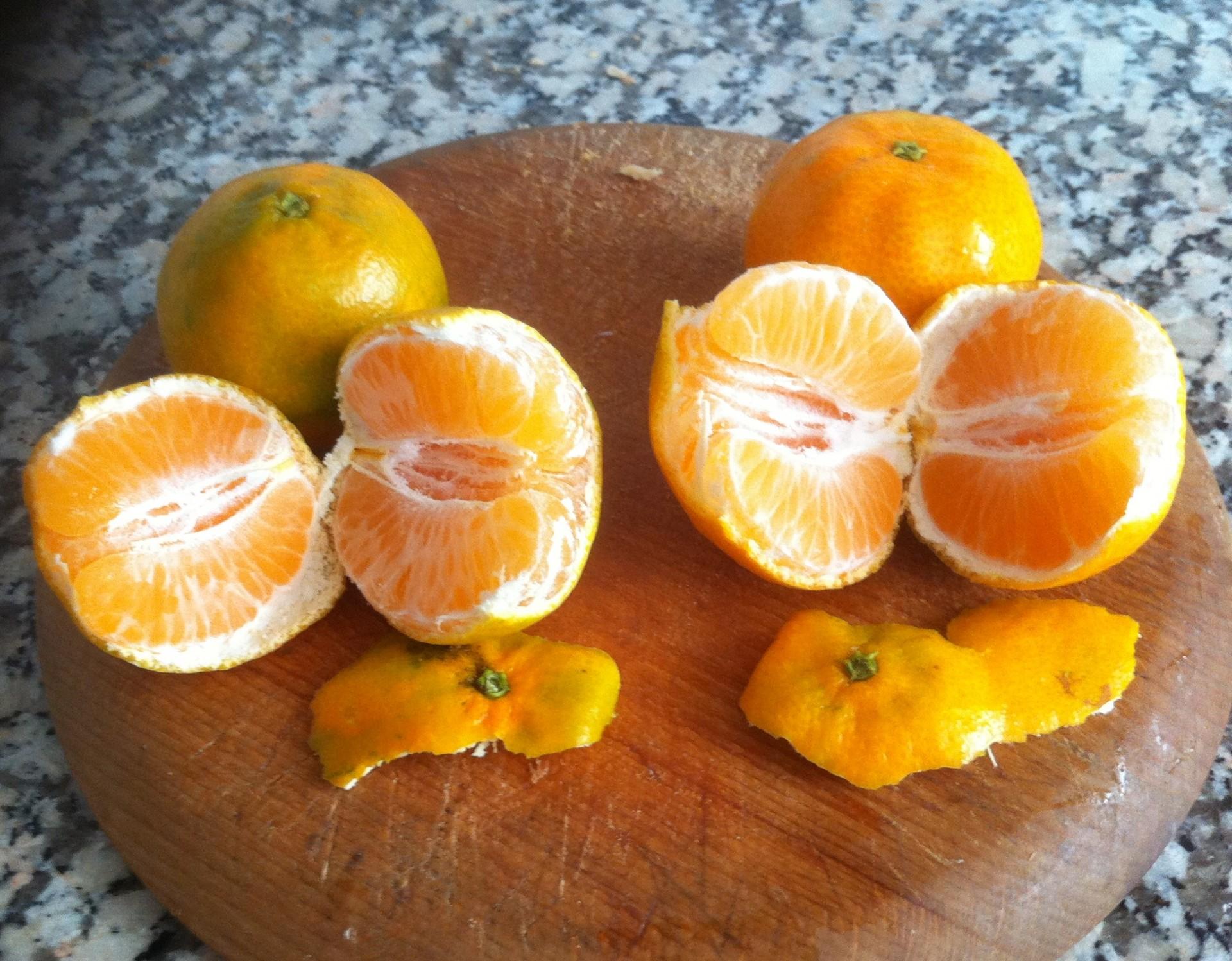 mandarina clemenpons